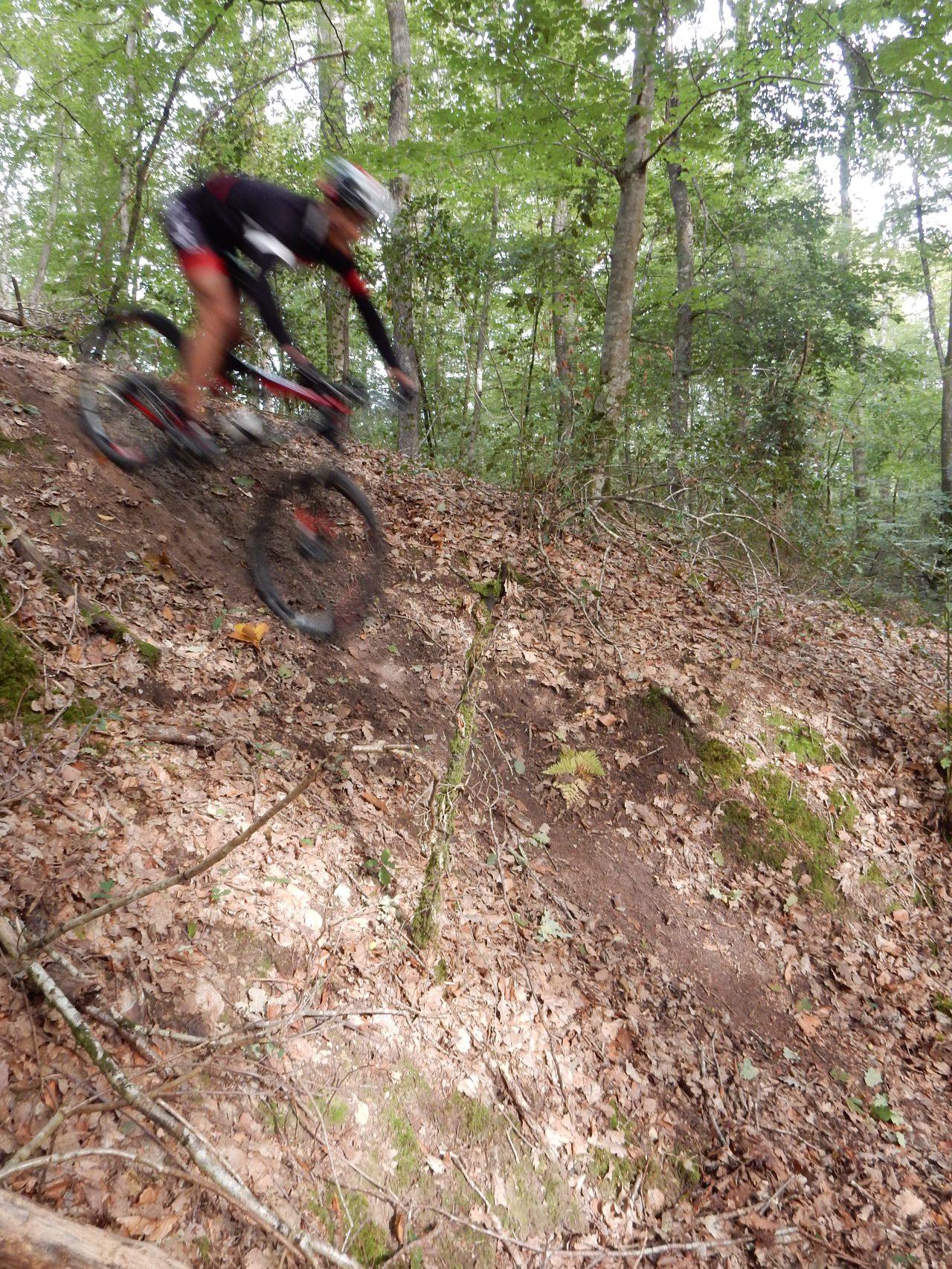 Petite session  VTT typée enduro en forêt de Chinon(37).